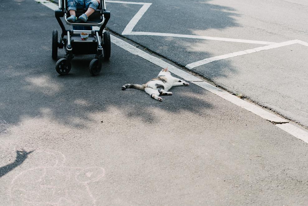 dokumentarische familienfotografie frankfurt