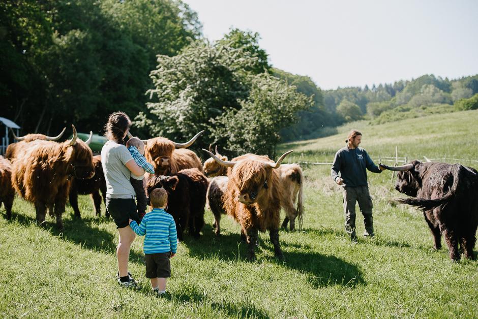 familienfotos mit tieren in der natur marburg