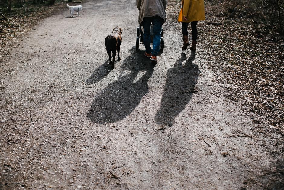dokumentarische familienfotos mit hunden