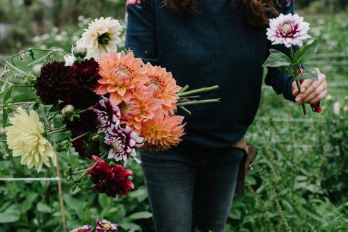 slow flowers leipzig personal branding